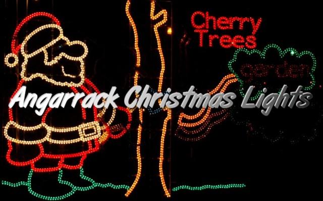 Angarrack Christmas Lights - Cherry Trees