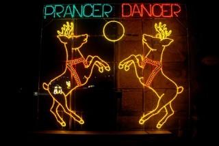 Reindeer Prancer & Dancer 2013